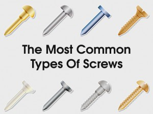 6 Types of Screws That Every Home Owner Should Know About
