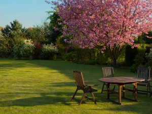 How To Apply Finishing Oil To Your Garden Furniture