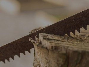 Can You Cut Trees & Branches With a Reciprocating Saw?