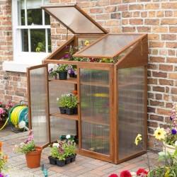 Hardwood Mini Greenhouse