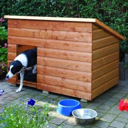 Large Dog Kennel - Dipped Honey Brown - 940 x 1380 x 900mm